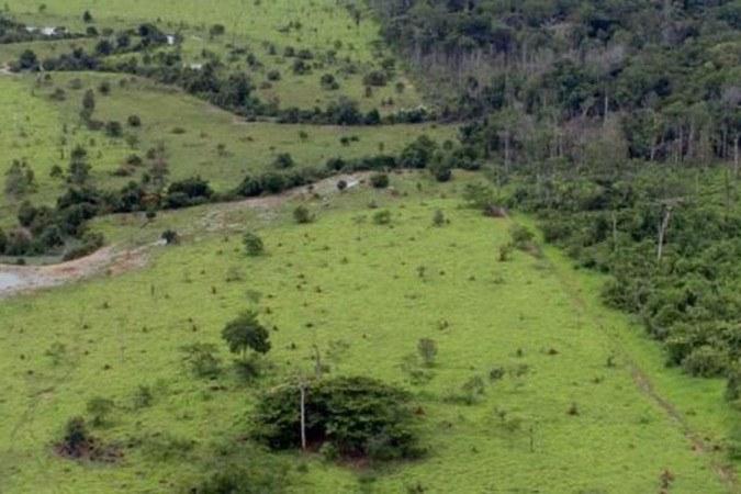 Desmatamento na Amazônia em abril atinge o pior índice para o mês desde 2016