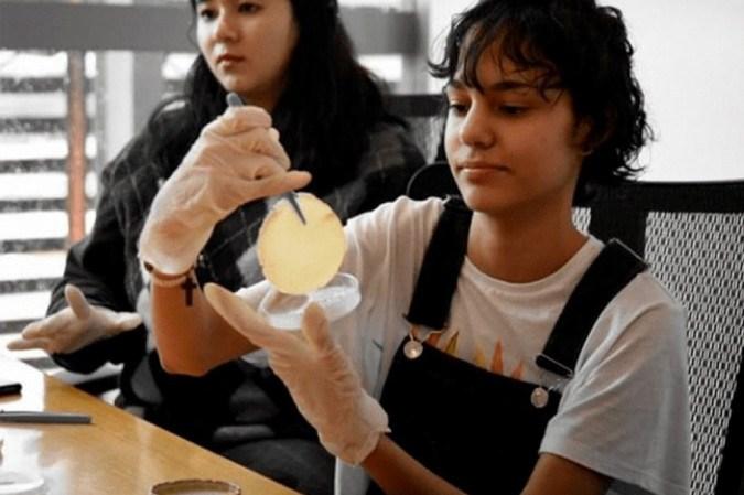 Estudante Bárbara Wingler manuseando o plástico produzido - (crédito: Arquivo pessoal)