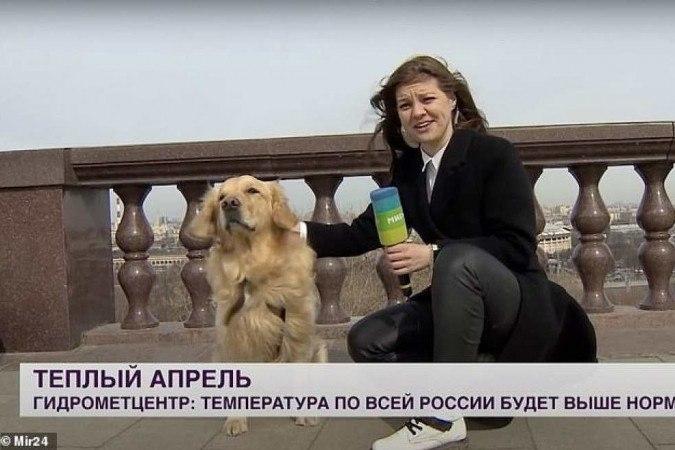 (crédito: MIrTV/ reprodução)