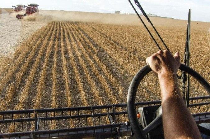 (crédito: Agronegócio: Impacto direto nas comunidades de agronegócios familiares que hoje recebem orientações e incentivos para atuarem como laboratórios de novas invenções e estudos. (Fonte: Grupo Cultivar))