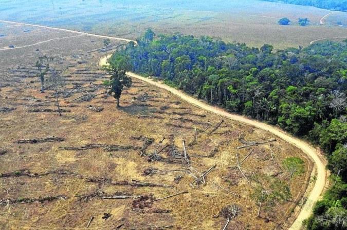 Desmatamento da Floresta Amazônica é um dos potenciadores da dívida ecológica -  (crédito: Carlos Fabal/AFP - 25/8/19)
